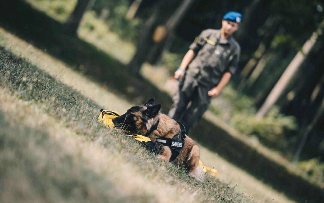 Corona Spürhund Bundesheer